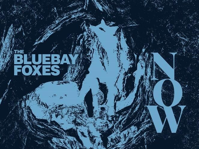 Bluebay Foxes: Now