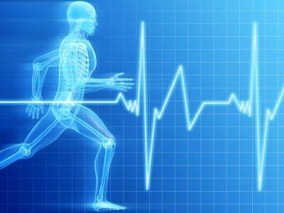 Bodyrope – az életünkhöz alkalmazkodó edzésmódszer