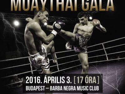 Vasárnap visszatérnek a pofonok a Barba Negrába – jön a Fight Night IV!