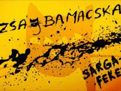 ZságbaMacska - Sárga-fekete