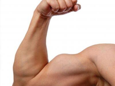 Bicepszgyakorlatok súlyzó nélkül