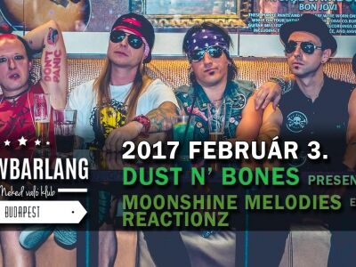 Guns N' Roses-alapvetések a Showbarlangban