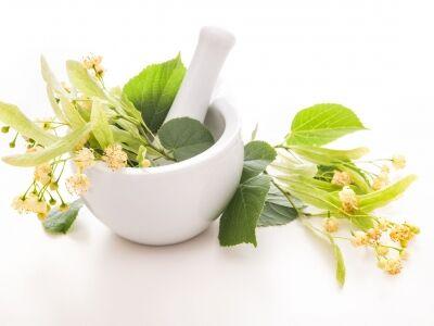 A hársfavirág tea gyógyító variációi