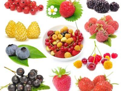 A nyár bio gyógyszerei