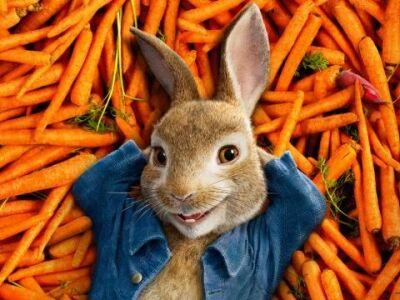 Húsvétra hangolva: Mit hozott a nyuszi?
