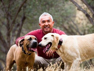 Cesar Millan a csodálatos kutyadoki két fiával lép fel