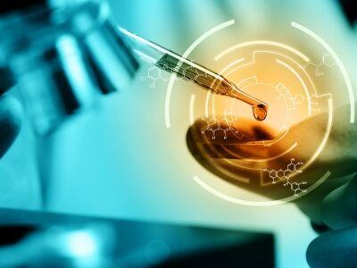 Endokrin diszruptorok: a ftalátok