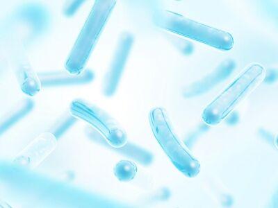 A szépség és a probiotikumok