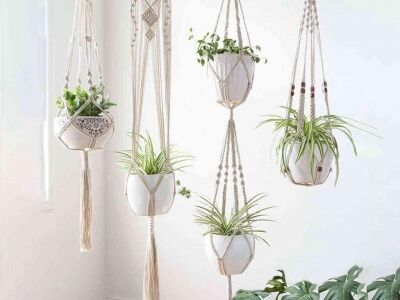 Csinálj helyet a növényednek!