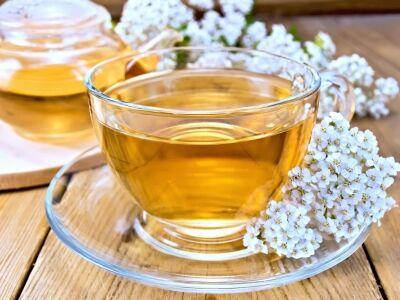 A legjobb gyógynövények felfázás ellen