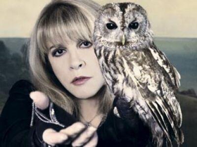 Dave Stewart Stevie Nicks-ről, a Fleetwood Mac énekesnőjéről forgatott dokumentumfilmet