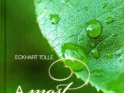 Miss Poppy - Eckhart Tolle: A Most hatalma