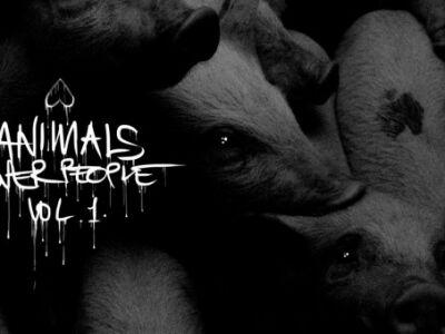 Animals Over People Vol 1. - A hazai underground ismét összefogott az állatokért
