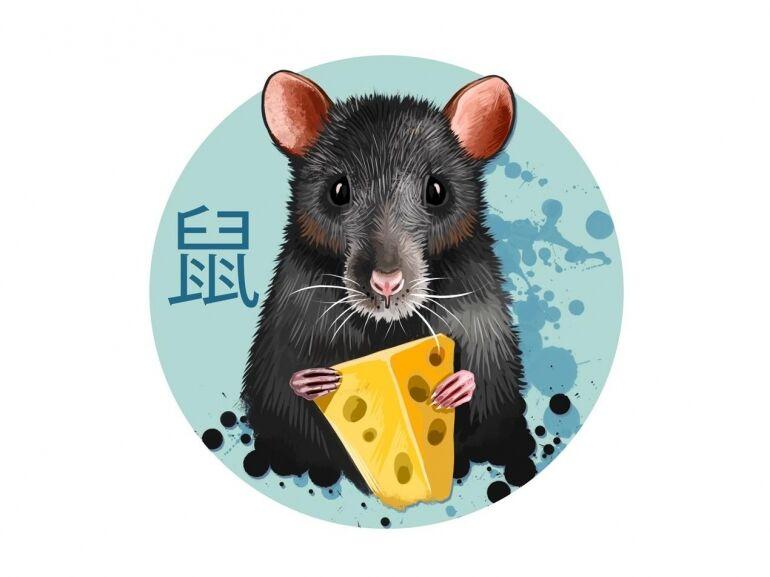 Az elbűvölő Patkány