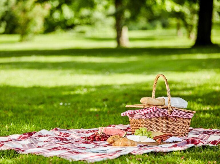 Mi kell egy jó piknikhez?