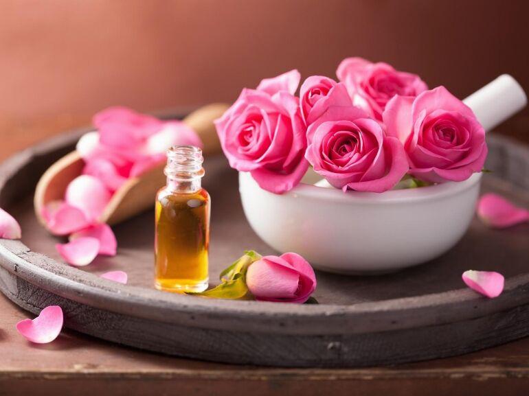 Rózsa a szépség szolgálatában