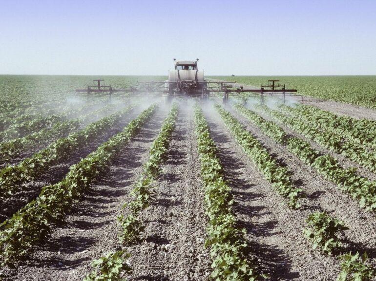 Így védekezz a növényvédőszerek ellen