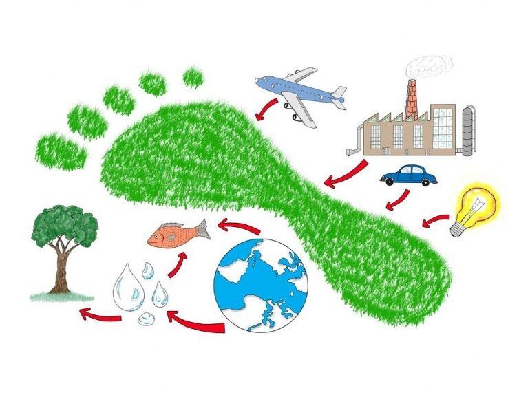 Hogyan csökkenthetjük öko-lábnyomunkat?