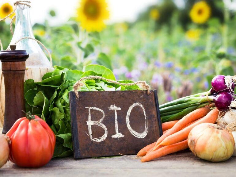 Bioélelmiszerekkel a Föld minden pontján