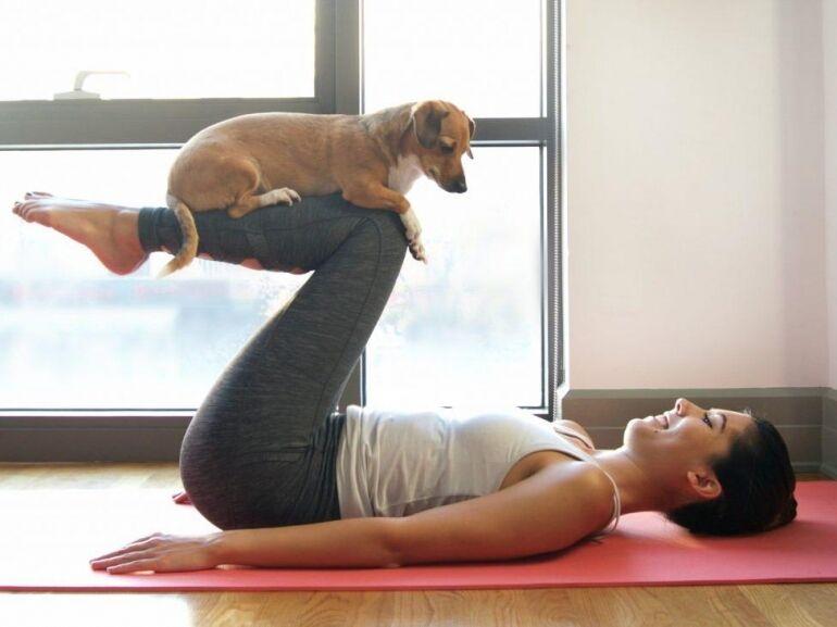 Póz lefelé néző kutyával