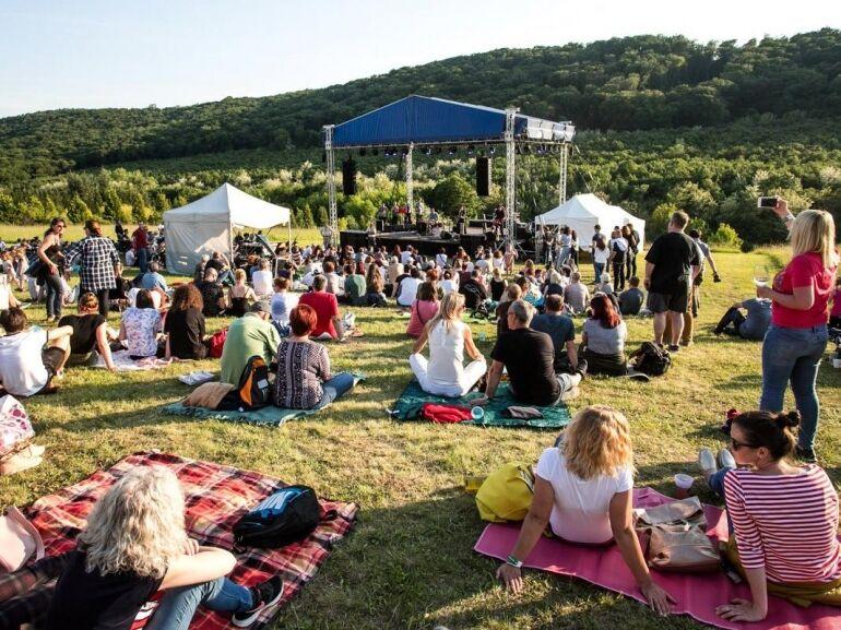Erdőszéli zenés-táncos piknik