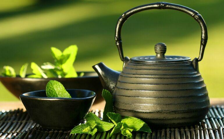 RCKSTR Light - A zöld tea élettani hatása